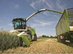 Услуги силосоуборочных комбайнов сенаж покос травы