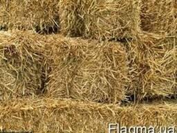 Услуги тюкования соломы сена услуги пресс-подборщика Украина