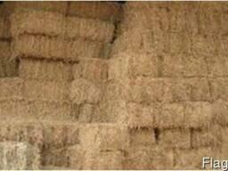 Услуги тюкования в тюки сена соломы пресс-подборщика