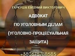 Услуги уголовного адвоката в Киеве.