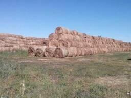 Услуги заготовки сена соломы комбайнами Ягуар покос побор ва