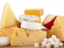 В2В, збільшення виходу напівтвердого сиру на 20-25%