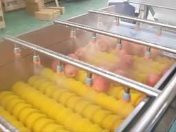 Вега BV 500 машина для мойки овощей и фруктов (деликатная мойка)