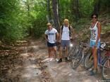 Велосипеды на прокат по горам и лесу - фото 2