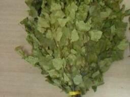 Веники для бани и сауны березовые дубовые