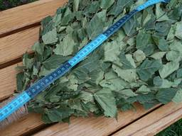 Веники Для Бани Віники для сауни дубові березові липові