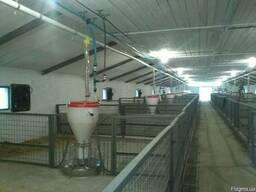Вентиляция ферм