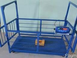 Весы для животных Trionyx П0712-СК-600 для свиней и поросят