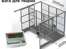 Весы платформенные (Польша)