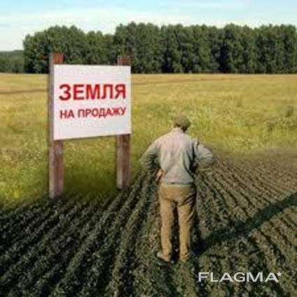 Викуп Землі ПАЙ ОСГ Куплю землю