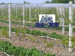 Виноградные столбики БУ с доставкой.