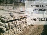Виноградный столб Одесса Дальник Малодолинское Ильичевск - фото 3