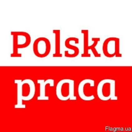 Виза. Трудоустройтво в Польше