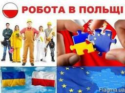 Візи, запрошення, страховка повний пакет документів в Польщу