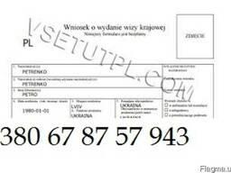 Визовая анкета для посольства/визового центра Польши