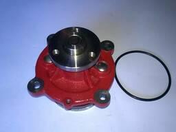 Водяной насос помпа на двигатель Deutz BF6M1013 /Дойц 1013