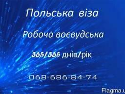Воєвудська віза – 365/365