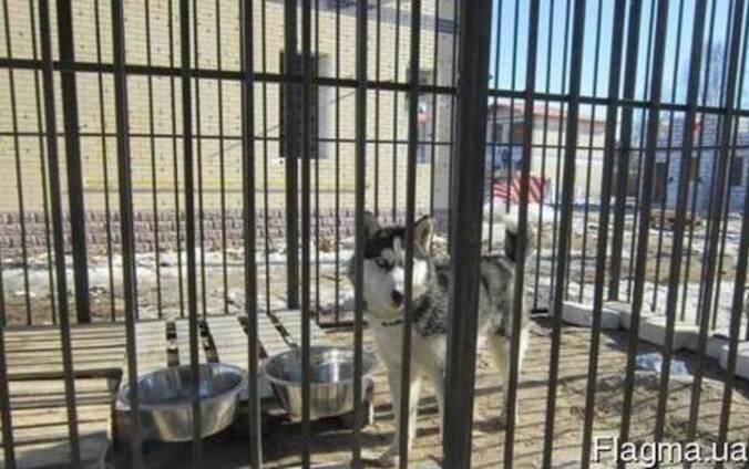 Вольеры Разборные для собак и других животных