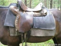 Войлок подхомутный шорный для лошади
