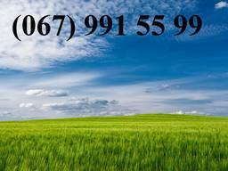 Куплю землю сельскохозяйственного назначения от 100 га