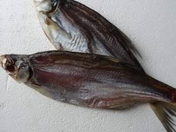 Вяленная рыба опт и розница. Тарань, Лещ, Чехонь, Синець, Густыря
