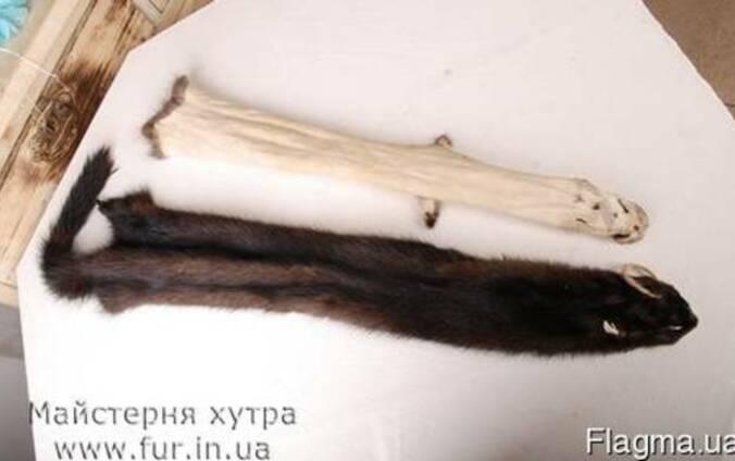 Выделка покраска стрижка меха, шкур бобра выдры лисицы нутри