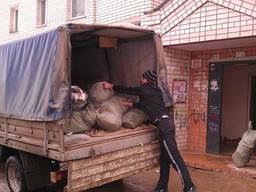 Вывоз строительного мусора от 1 мешка по Запорожью