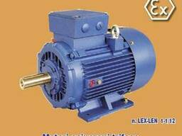 Взрывозащищенные асинхронные электродвигатели Euromotori