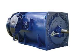 Высоковольтный Взрывозащищенный Электродвигатель 0, 16-5 МВт