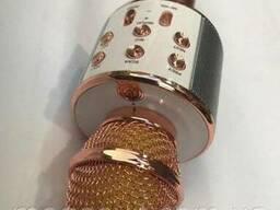 Wireles mickrophone HIFI speaker WS - 858