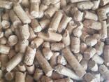 Wood Pellets and briquettes - фото 1