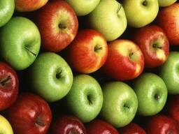 Яблоки от производителя. Мелитополь.