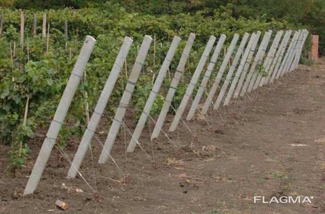 Якорное крепление с тросиком для сада и винограда