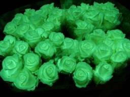 Яркая флуоресцентная компания для цветов