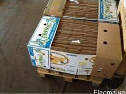 Ящик бананка новый