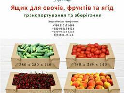 Ящик, коробка для овощей, ягод и фруктов 380х280х140 мм