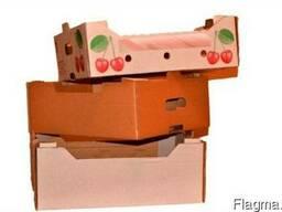 Ящик для хурмы