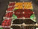 Ящик для овощей и фруктов - фото 1