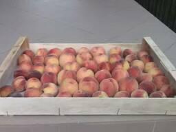 Ящик для персика, абрикоса, сливы
