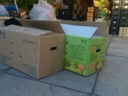 Ящик яичный