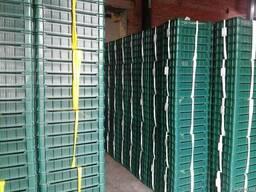 Продам ящик чешка ягодный 600*400*115, 600*400*95
