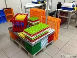 Ящики для перевозки голубей
