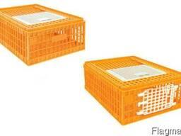 Ящики для перевозки живой птицы