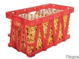 Ящики для перевозки яиц