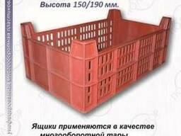 Ящики для рыбы размер 500Х300Х150