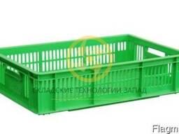 Ящики пластиковые для перевозки суточных цыплят