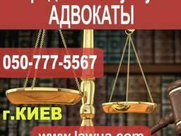 Юридические услуги адвокаты. Киев