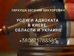 Юридична допомога в Києві. Адвокат в Києві.