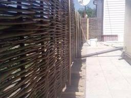 Забор из лозы