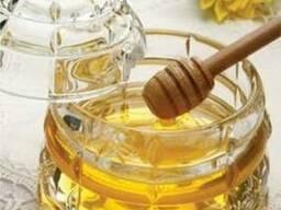 Закупаем мед оптом от 3 тонн